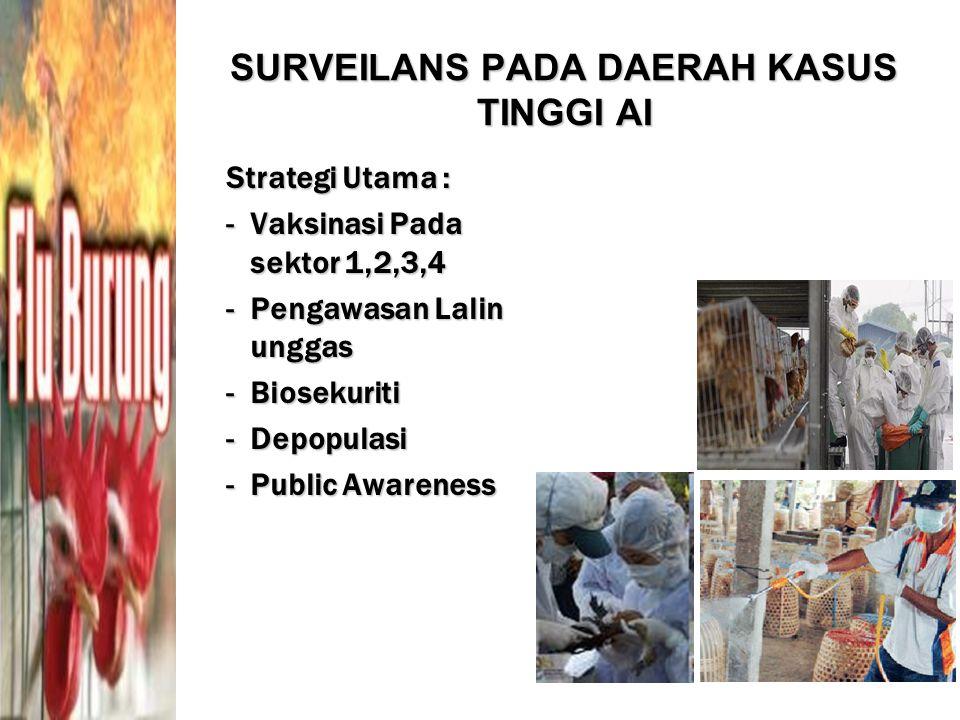 SURVEILANS PADA DAERAH KASUS TINGGI AI Strategi Utama : -Vaksinasi Pada sektor 1,2,3,4 -Pengawasan Lalin unggas -Biosekuriti -Depopulasi -Public Aware