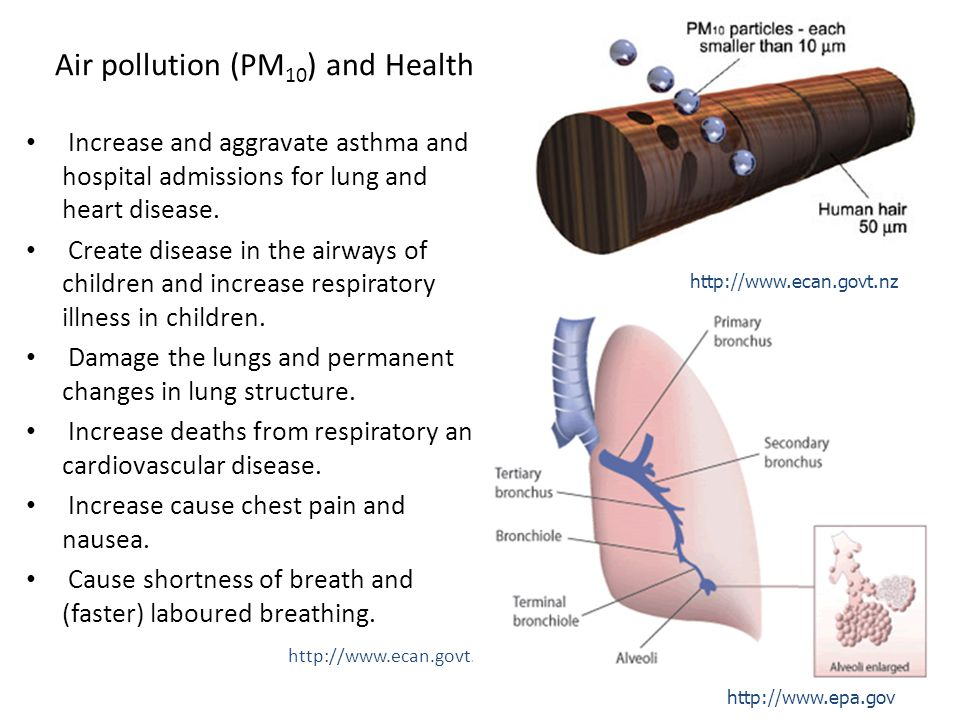 5 Air pollution (PM 10 ) and Health Increase and aggravate asthma and hospital admissions for lung and heart disease.