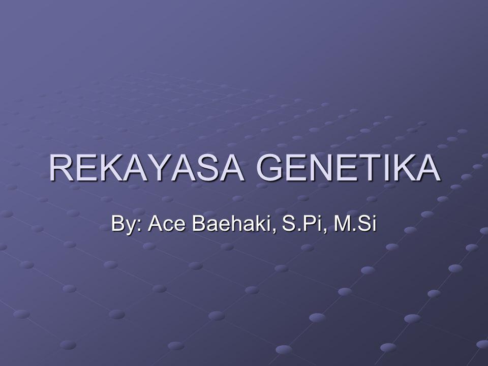 Dalam rekayasa genetika  DNA dan RNA DNA (deoxyribonucleic Acid) : penyimpan informasi genetika Informasi  melambangkan suatu keteraturan kebalikan dari entropi yaitu ketidakteraturan atau acak Komputer  penyimpan, pengolah dan penarikan informasi, bahasa komputer: unit informasi  bit (binary digit) Jumlah dan jenis informasi yg terdapat di dalam sel manusia masih melampaui sel pembuatan program oleh komputer