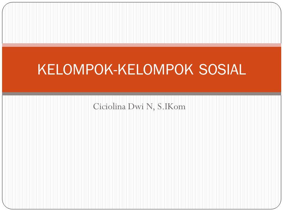 Ciciolina Dwi N, S.IKom KELOMPOK-KELOMPOK SOSIAL