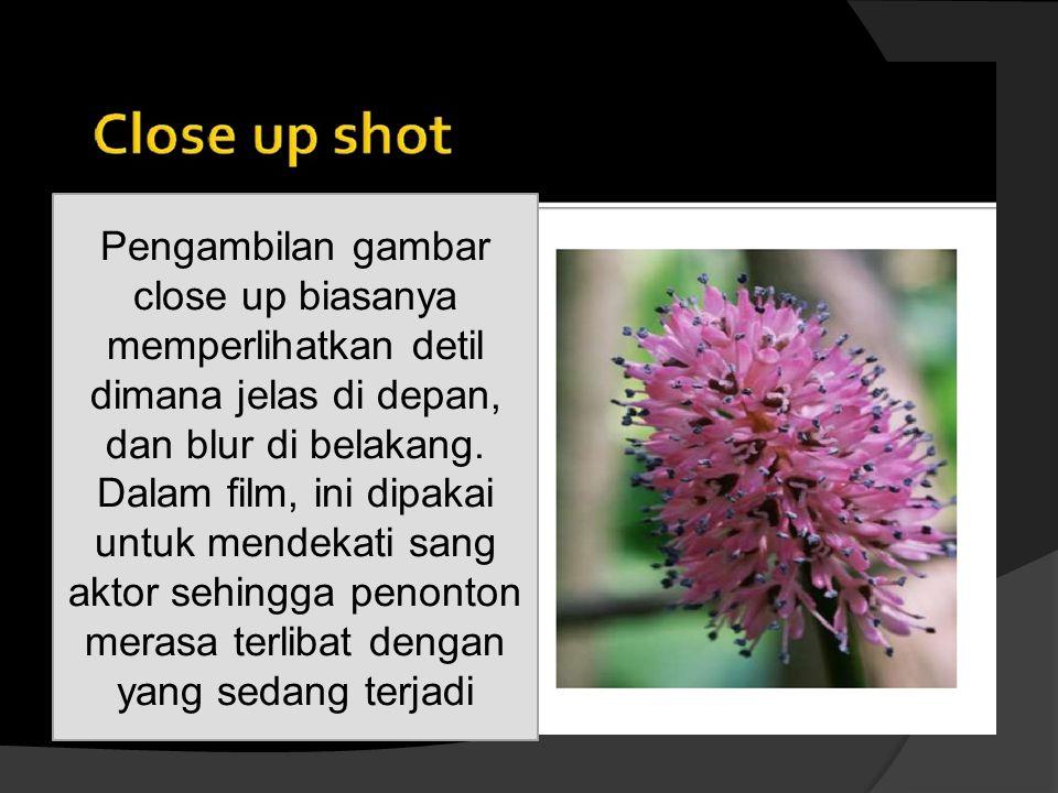 Pengambilan gambar close up biasanya memperlihatkan detil dimana jelas di depan, dan blur di belakang. Dalam film, ini dipakai untuk mendekati sang ak
