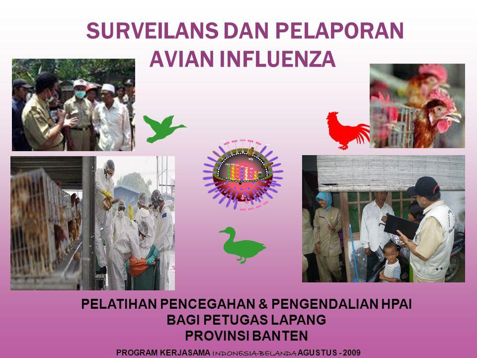 SURVEILANS DAN PELAPORAN AVIAN INFLUENZA PELATIHAN PENCEGAHAN & PENGENDALIAN HPAI BAGI PETUGAS LAPANG PROVINSI BANTEN PROGRAM KERJASAMA INDONESIA-BELANDA AGUSTUS - 2009
