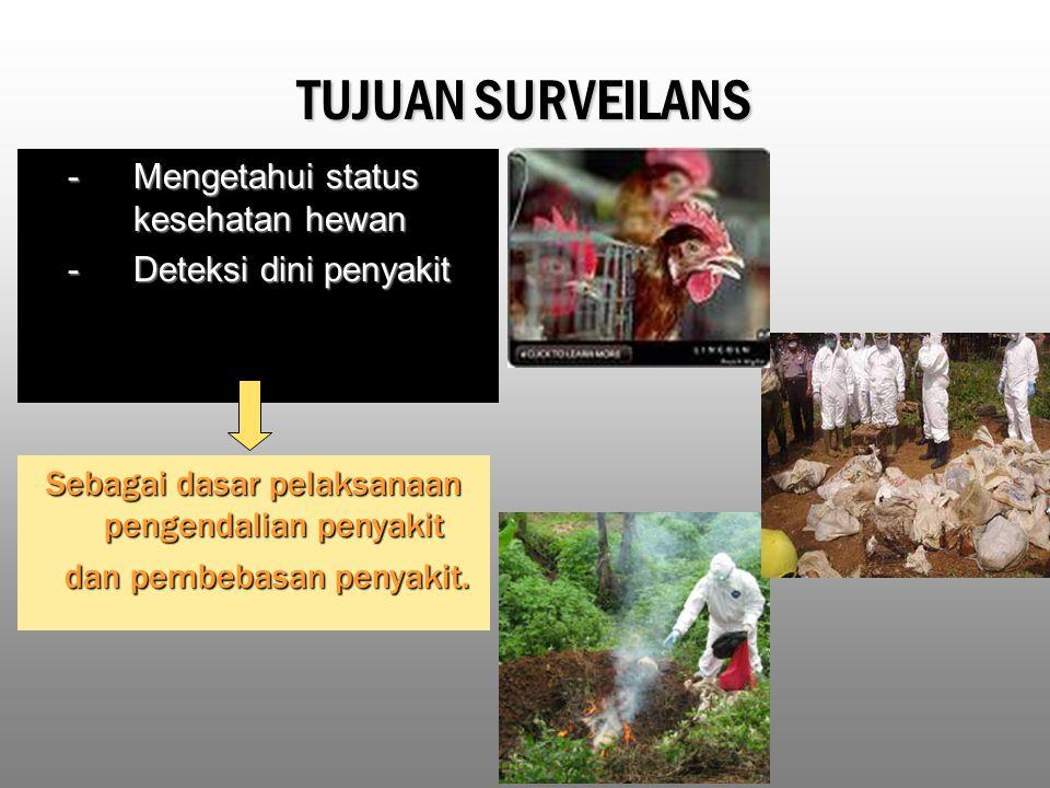 TUJUAN SURVEILANS - Mengetahui status kesehatan hewan - Deteksi dini penyakit Sebagai dasar pelaksanaan pengendalian penyakit dan pembebasan penyakit.