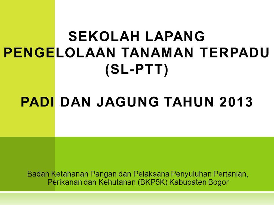 Badan Ketahanan Pangan dan Pelaksana Penyuluhan Pertanian, Perikanan dan Kehutanan (BKP5K) Kabupaten Bogor SEKOLAH LAPANG PENGELOLAAN TANAMAN TERPADU