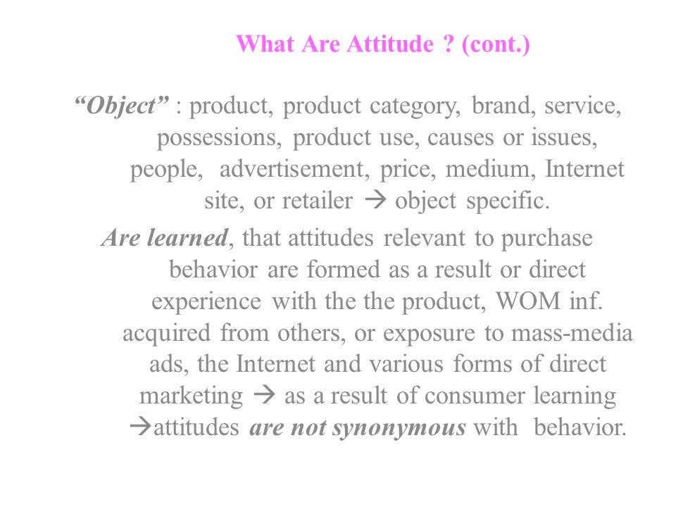 What Are Attitude .