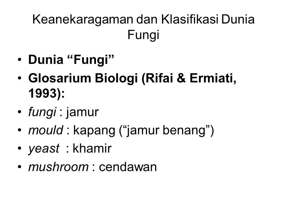 Keanekaragaman dan Klasifikasi Dunia Fungi Dunia Fungi Glosarium Biologi (Rifai & Ermiati, 1993): fungi : jamur mould : kapang ( jamur benang ) yeast : khamir mushroom : cendawan