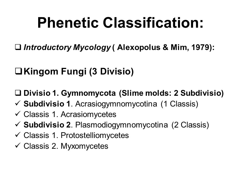 Phenetic Classification:  Introductory Mycology ( Alexopolus & Mim, 1979):  Kingom Fungi (3 Divisio)  Divisio 1.
