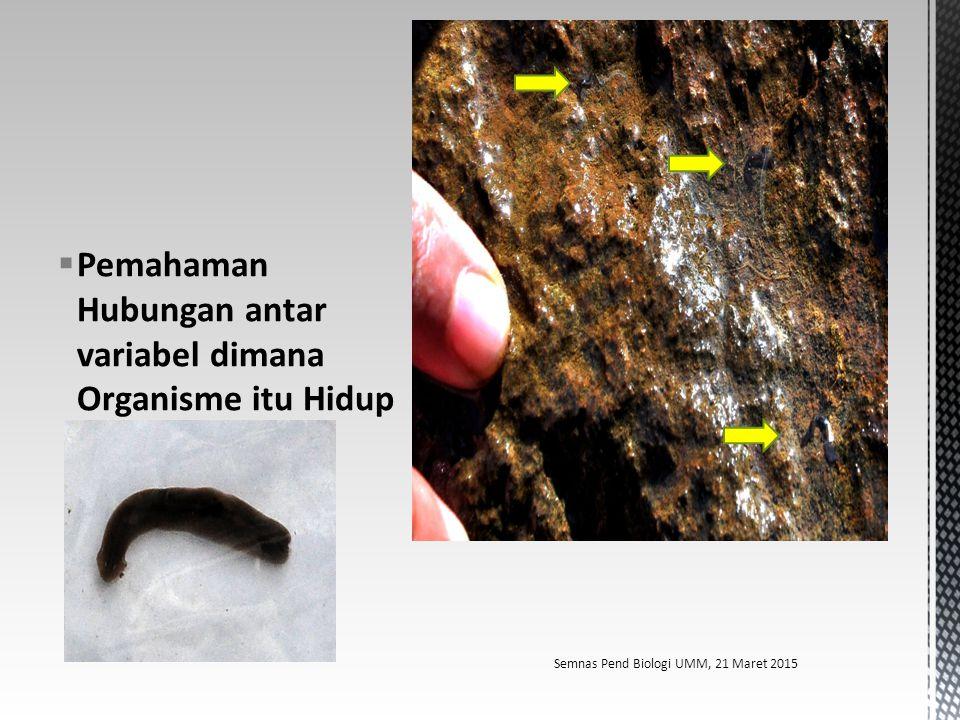 Pemahaman Hubungan antar variabel dimana Organisme itu Hidup Semnas Pend Biologi UMM, 21 Maret 2015