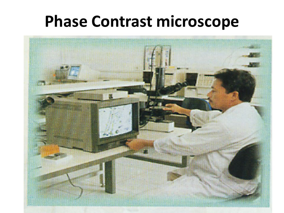 Phase Contrast microscope