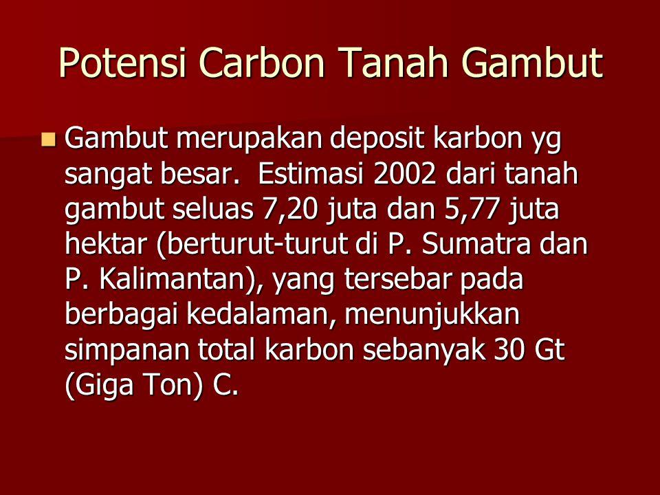 Potensi Carbon Tanah Gambut Gambut merupakan deposit karbon yg sangat besar. Estimasi 2002 dari tanah gambut seluas 7,20 juta dan 5,77 juta hektar (be