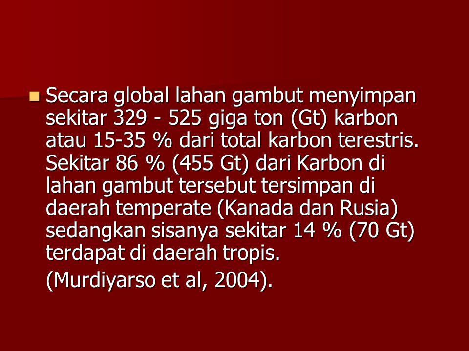 Secara global lahan gambut menyimpan sekitar 329 - 525 giga ton (Gt) karbon atau 15-35 % dari total karbon terestris. Sekitar 86 % (455 Gt) dari Karbo