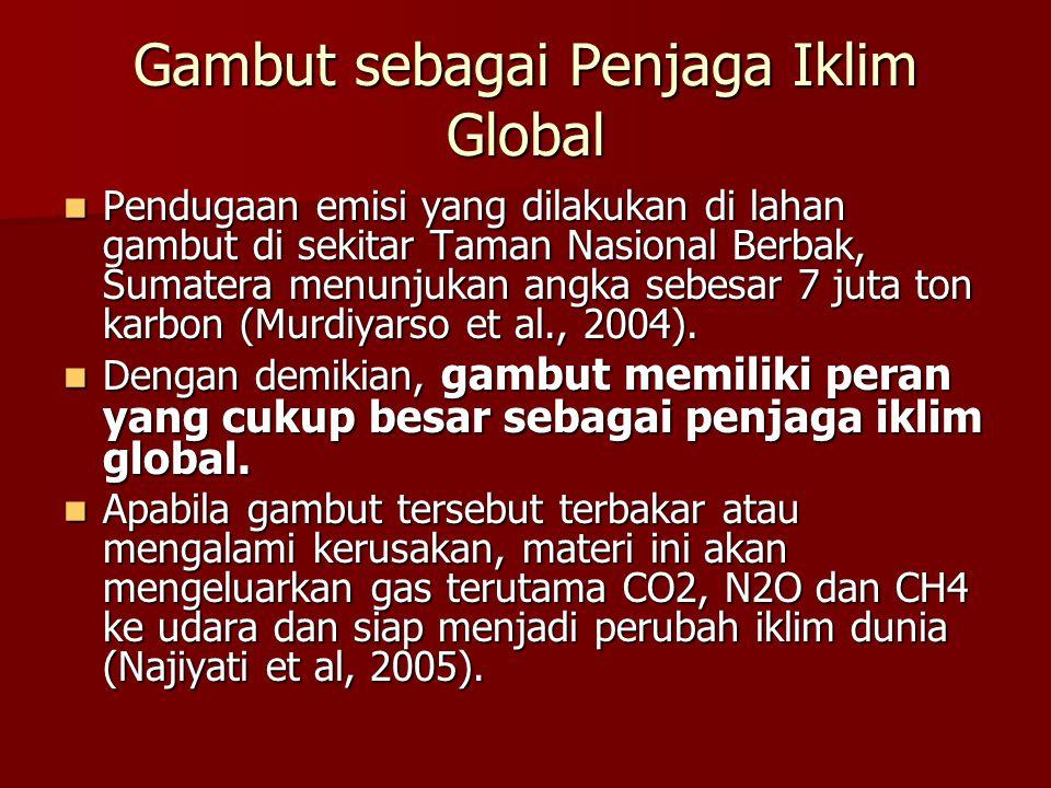 Gambut sebagai Penjaga Iklim Global Pendugaan emisi yang dilakukan di lahan gambut di sekitar Taman Nasional Berbak, Sumatera menunjukan angka sebesar