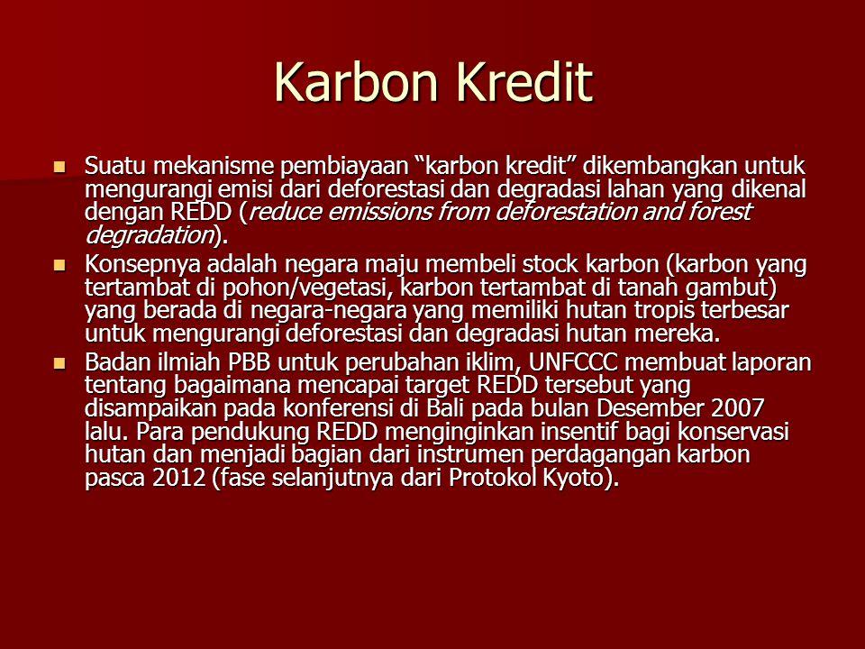 """Karbon Kredit Suatu mekanisme pembiayaan """"karbon kredit"""" dikembangkan untuk mengurangi emisi dari deforestasi dan degradasi lahan yang dikenal dengan"""