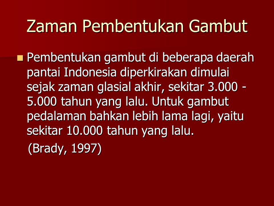 Zaman Pembentukan Gambut Pembentukan gambut di beberapa daerah pantai Indonesia diperkirakan dimulai sejak zaman glasial akhir, sekitar 3.000 - 5.000