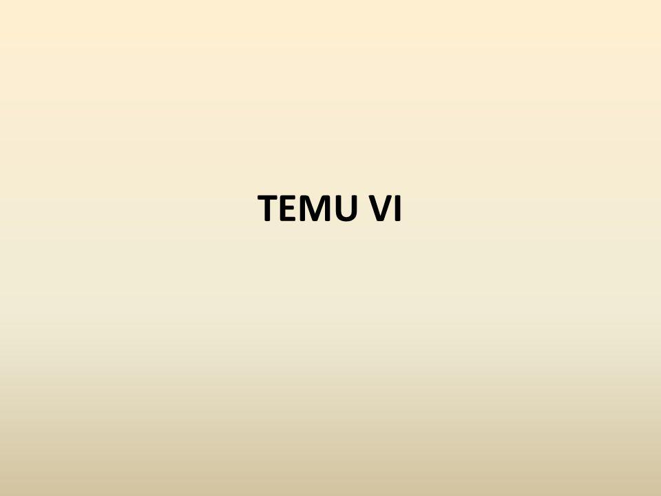 TEMU VI