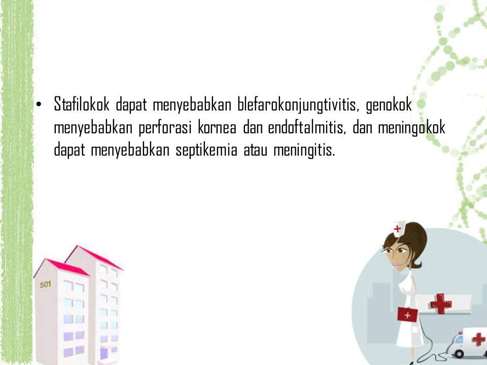 Stafilokok dapat menyebabkan blefarokonjungtivitis, genokok menyebabkan perforasi kornea dan endoftalmitis, dan meningokok dapat menyebabkan septikemi