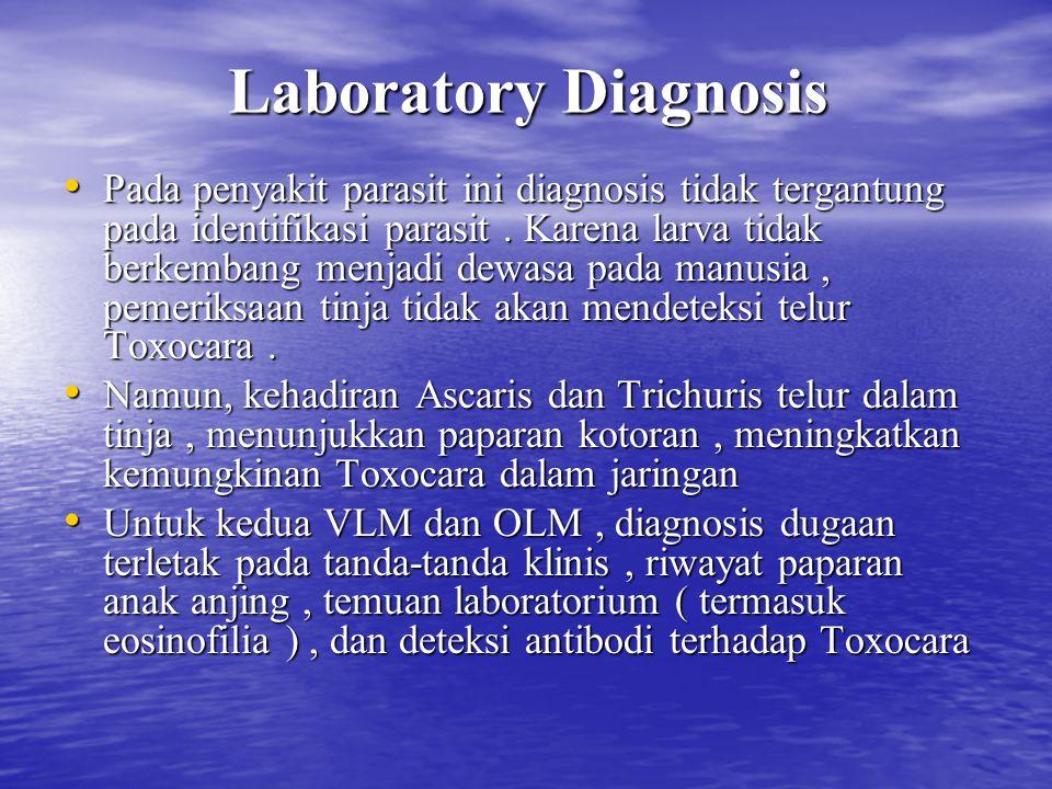 Laboratory Diagnosis Pada penyakit parasit ini diagnosis tidak tergantung pada identifikasi parasit. Karena larva tidak berkembang menjadi dewasa pada