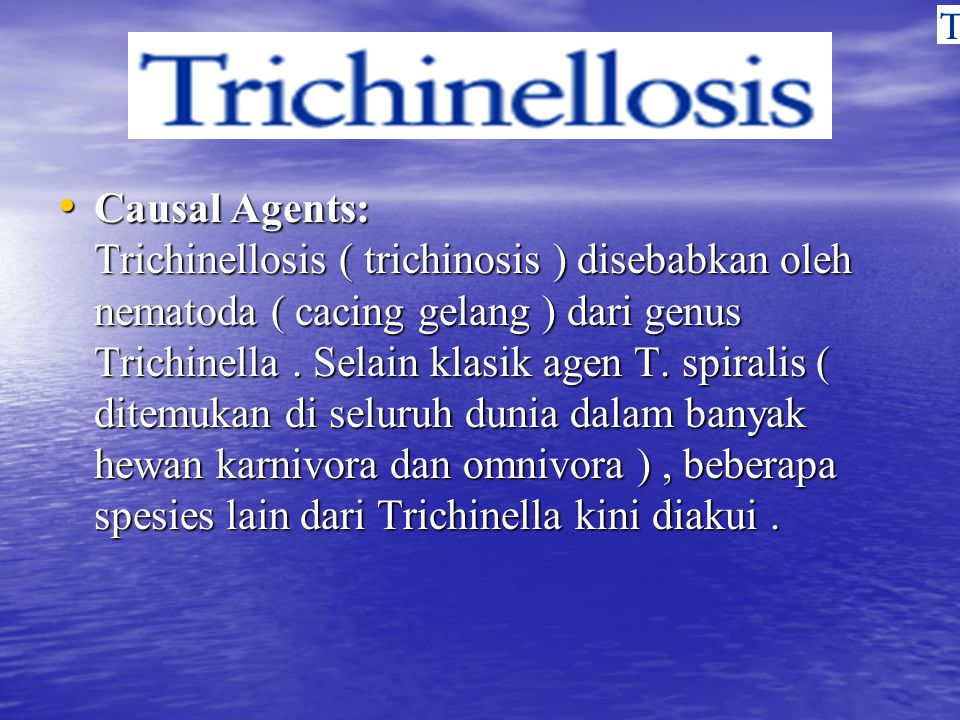 Causal Agents: Trichinellosis ( trichinosis ) disebabkan oleh nematoda ( cacing gelang ) dari genus Trichinella. Selain klasik agen T. spiralis ( dite