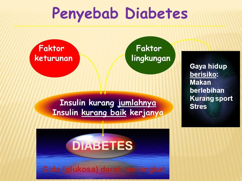 Penyebab Diabetes Faktor keturunan Insulin kurang jumlahnya Insulin kurang baik kerjanya DIABETES Gula (glukosa) darah meningkat Gaya hidup berisiko: Makan berlebihan Kurang sport Stres Faktor lingkungan