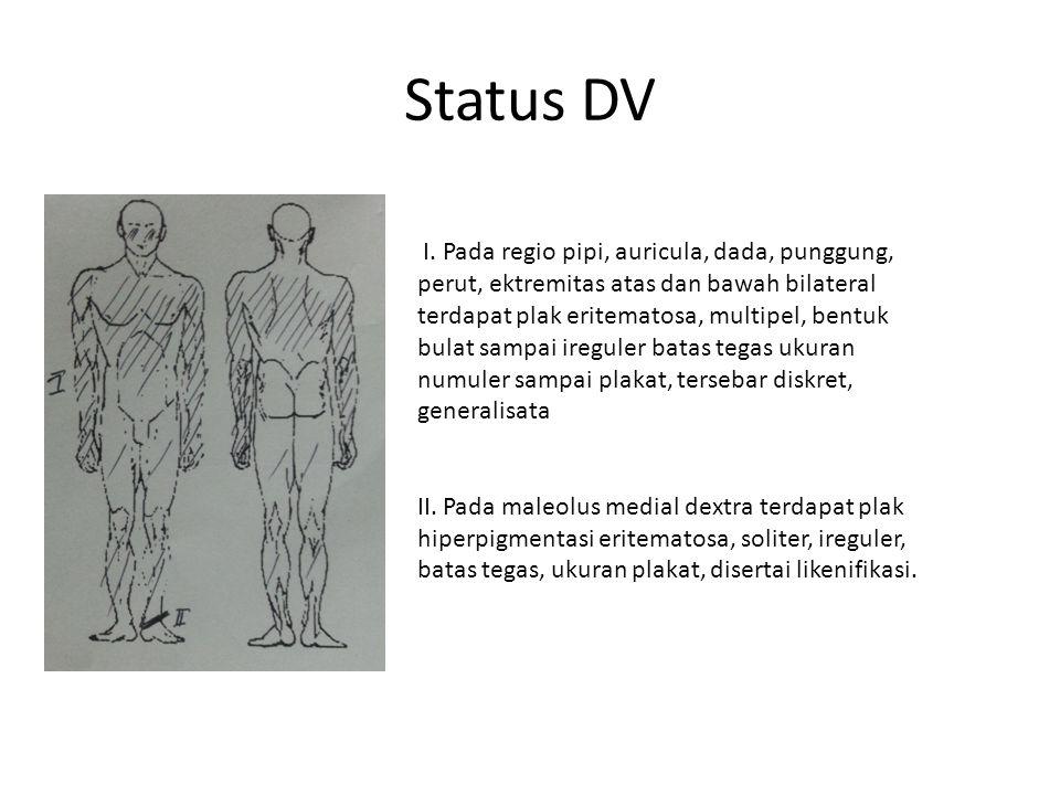Status DV I.