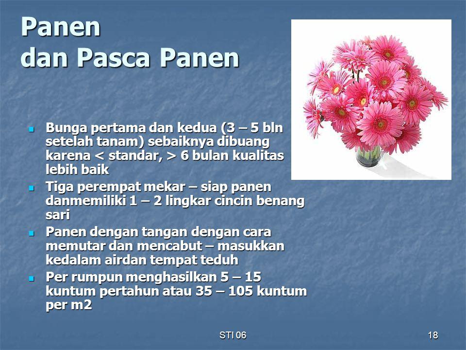 STI 0618 Panen dan Pasca Panen Bunga pertama dan kedua (3 – 5 bln setelah tanam) sebaiknya dibuang karena 6 bulan kualitas lebih baik Bunga pertama da