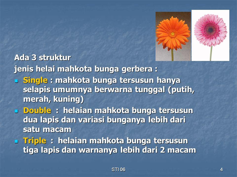 STI 064 Ada 3 struktur jenis helai mahkota bunga gerbera : Single : mahkota bunga tersusun hanya selapis umumnya berwarna tunggal (putih, merah, kunin