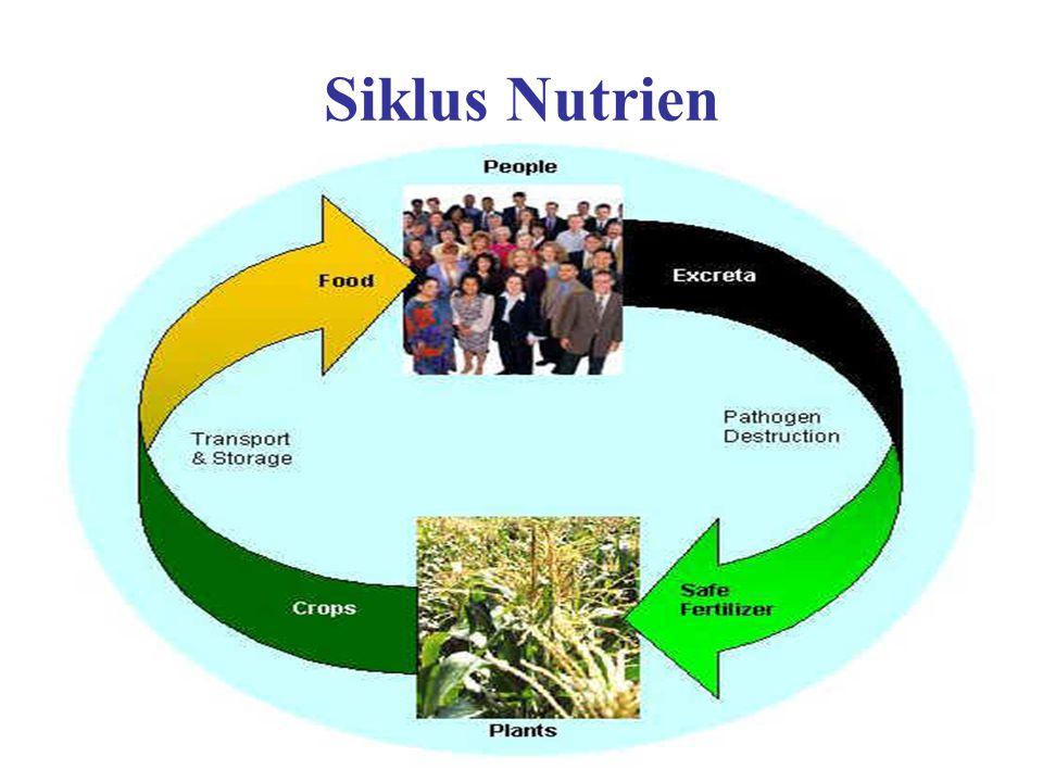Siklus Nutrien