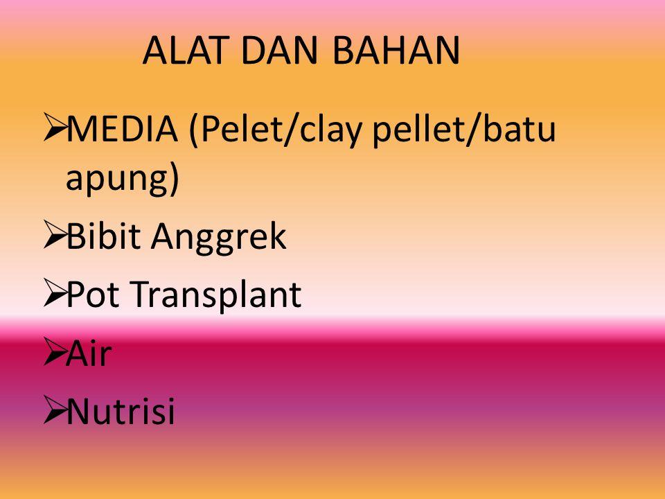 ALAT DAN BAHAN MMEDIA (Pelet/clay pellet/batu apung) BBibit Anggrek PPot Transplant AAir NNutrisi