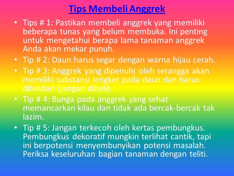 Tips Menyiram Anggrek: Tips # 1: Siram anggrek di pagi hari untuk memberikan waktu agar air pada daun untuk menguap.
