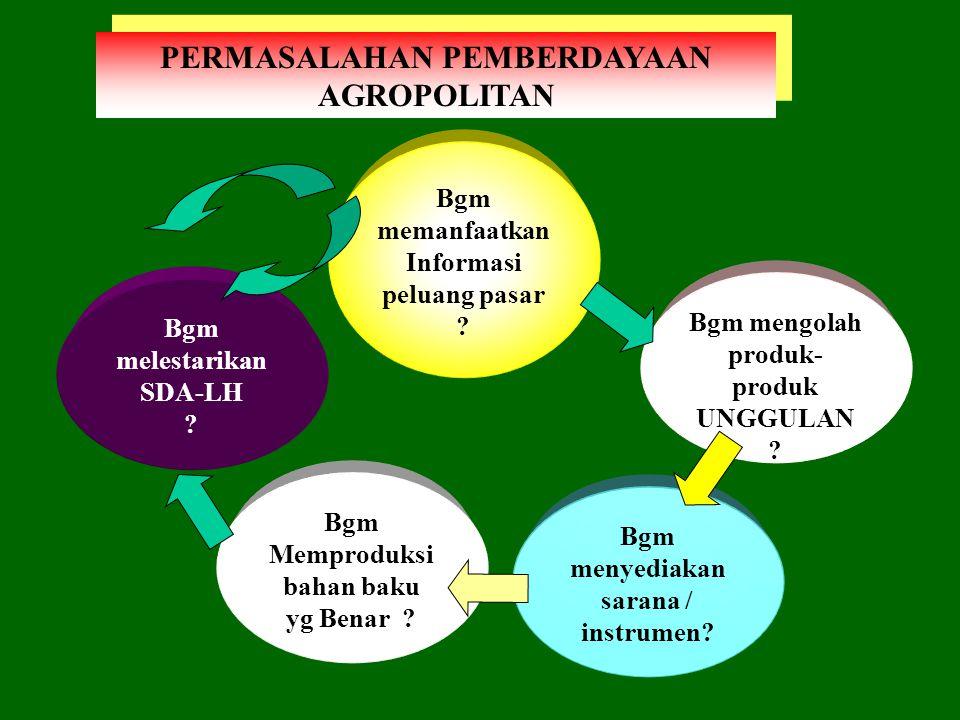 ASAS AGROPOLITAN Kebersamaan ekonomi melalui : PEMBERDAYAAN & PENINGKATAN PERAN Masyarakat Lokal Pelaku Bisnis COMMUNITY BASES Masyarakat Lokal Pelaku