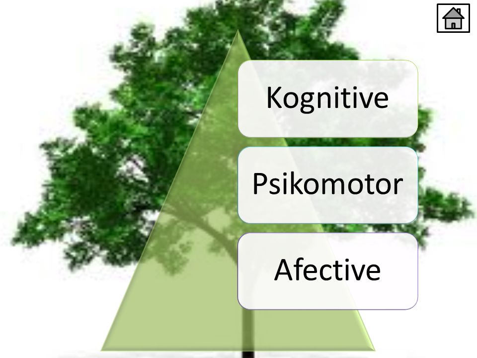 KognitivePsikomotorAfective