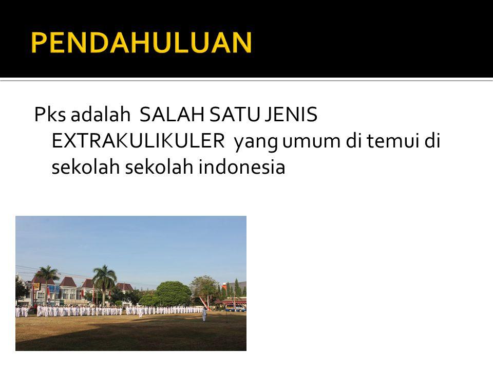 Pks adalah SALAH SATU JENIS EXTRAKULIKULER yang umum di temui di sekolah sekolah indonesia