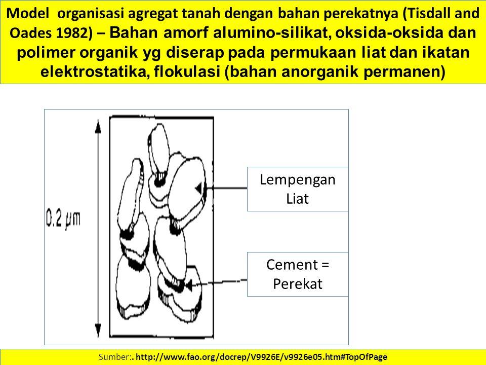 Sumber:. http://www.fao.org/docrep/V9926E/v9926e05.htm#TopOfPage Model organisasi agregat tanah dengan bahan perekatnya (Tisdall and Oades 1982) – Bah