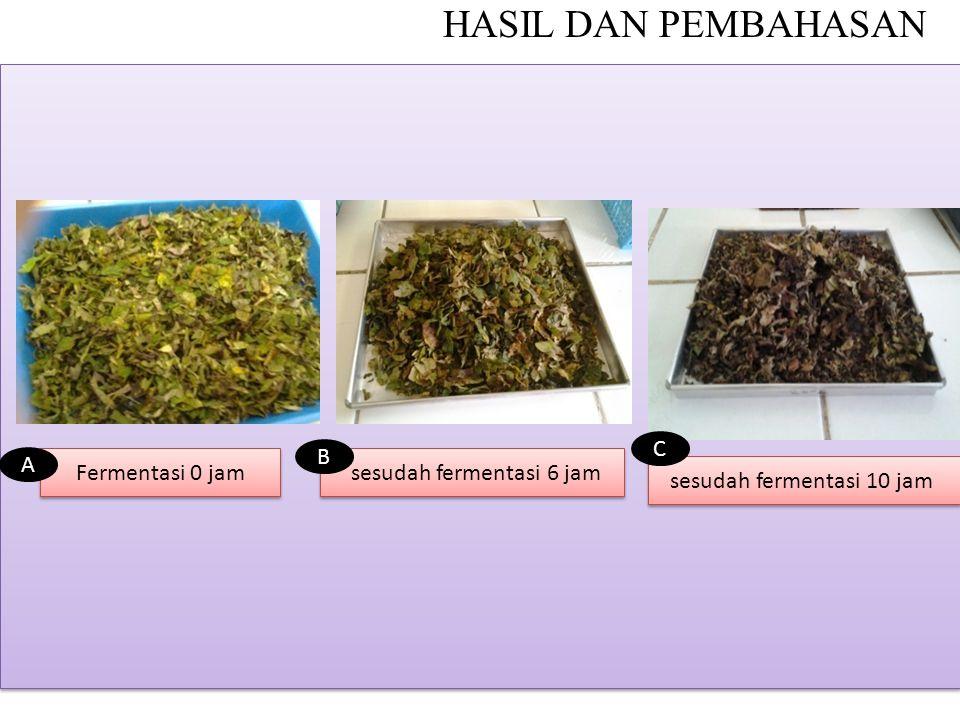 HASIL DAN PEMBAHASAN Fermentasi 0 jam sesudah fermentasi 6 jam B A sesudah fermentasi 10 jam C