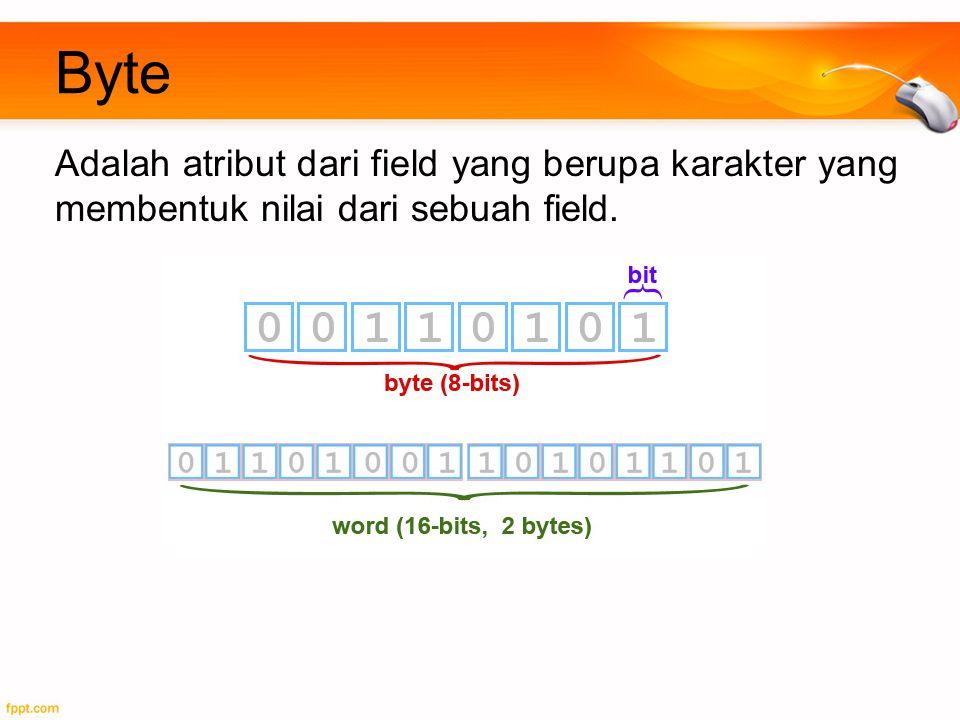Byte Adalah atribut dari field yang berupa karakter yang membentuk nilai dari sebuah field.