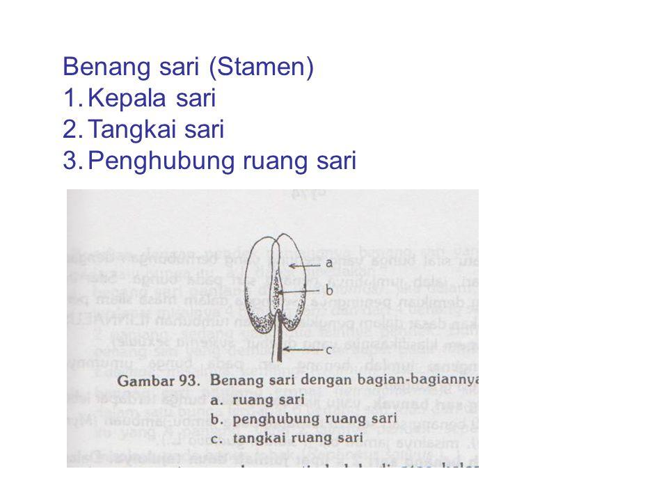 Benang sari (Stamen) 1.Kepala sari 2.Tangkai sari 3.Penghubung ruang sari