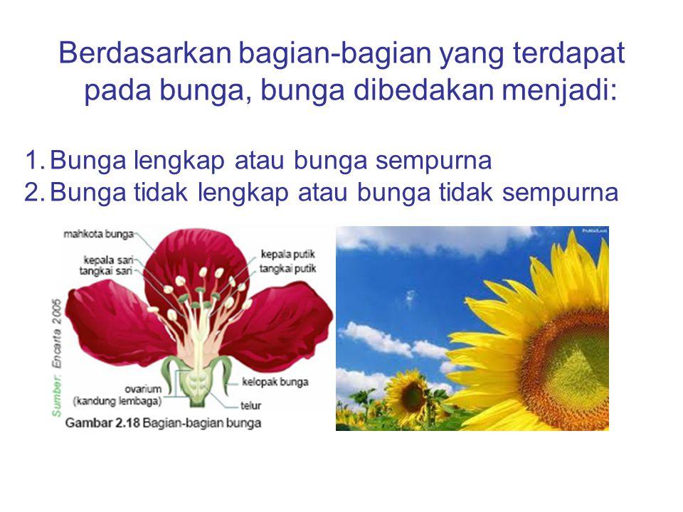 Berdasarkan bagian-bagian yang terdapat pada bunga, bunga dibedakan menjadi: 1.Bunga lengkap atau bunga sempurna 2.Bunga tidak lengkap atau bunga tida