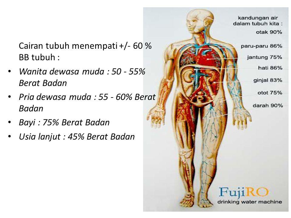 Cairan tubuh menempati +/- 60 % BB tubuh : Wanita dewasa muda : 50 - 55% Berat Badan Pria dewasa muda : 55 - 60% Berat Badan Bayi : 75% Berat Badan Us