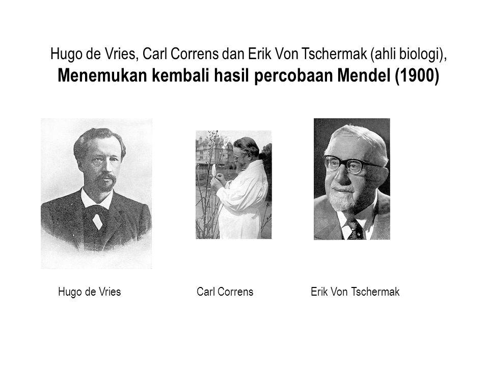 Hugo de Vries, Carl Correns dan Erik Von Tschermak (ahli biologi), Menemukan kembali hasil percobaan Mendel (1900) Hugo de VriesCarl CorrensErik Von T