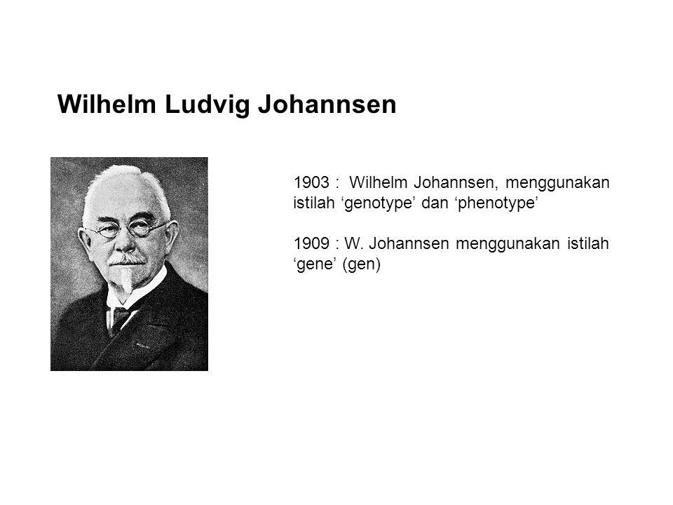 Wilhelm Ludvig Johannsen 1903 : Wilhelm Johannsen, menggunakan istilah 'genotype' dan 'phenotype' 1909 : W.