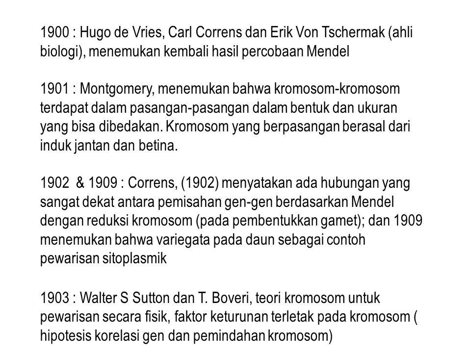 1900 : Hugo de Vries, Carl Correns dan Erik Von Tschermak (ahli biologi), menemukan kembali hasil percobaan Mendel 1901 : Montgomery, menemukan bahwa