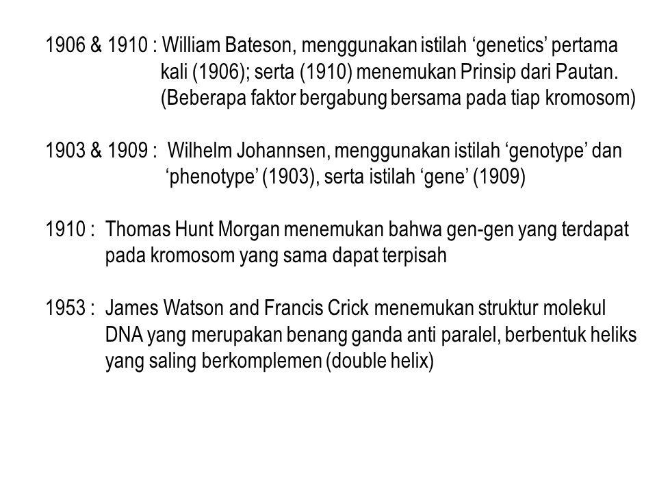 1906 & 1910 : William Bateson, menggunakan istilah 'genetics' pertama kali (1906); serta (1910) menemukan Prinsip dari Pautan. (Beberapa faktor bergab