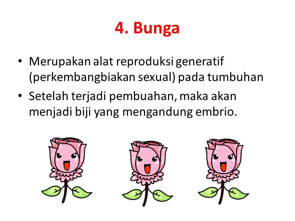 4. Bunga Merupakan alat reproduksi generatif (perkembangbiakan sexual) pada tumbuhan Setelah terjadi pembuahan, maka akan menjadi biji yang mengandung