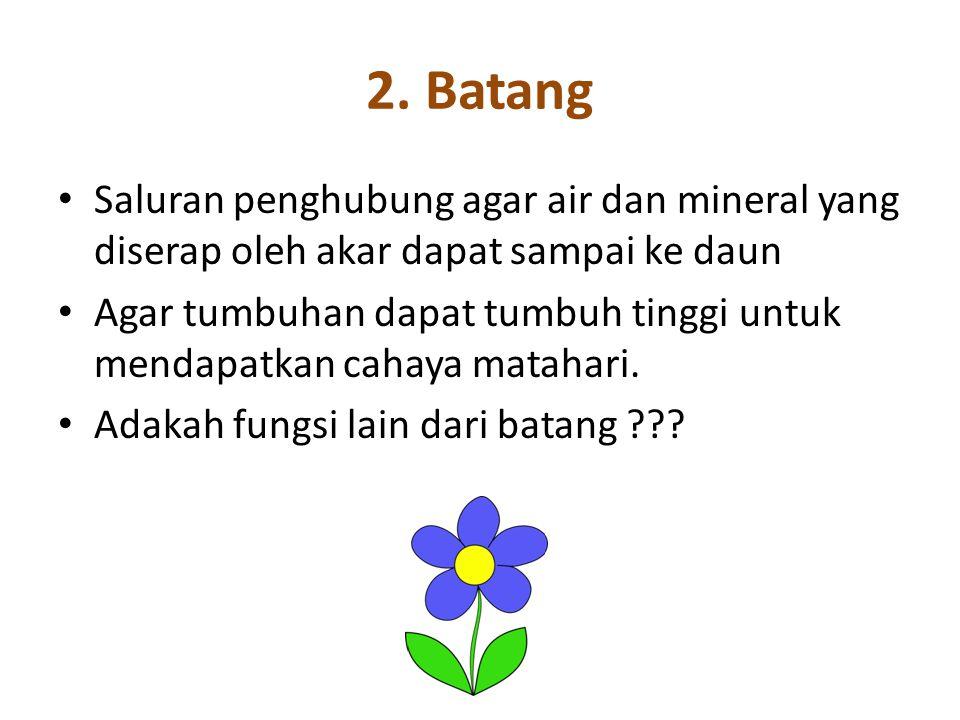 2. Batang Saluran penghubung agar air dan mineral yang diserap oleh akar dapat sampai ke daun Agar tumbuhan dapat tumbuh tinggi untuk mendapatkan caha