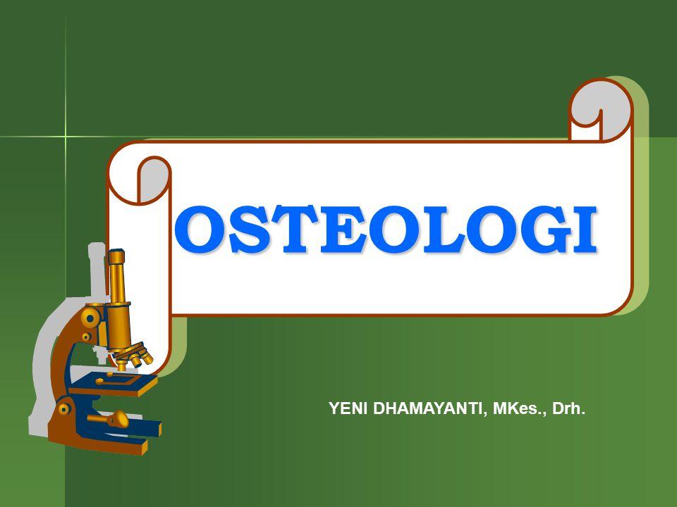 OSTEOLOGI YENI DHAMAYANTI, MKes., Drh.