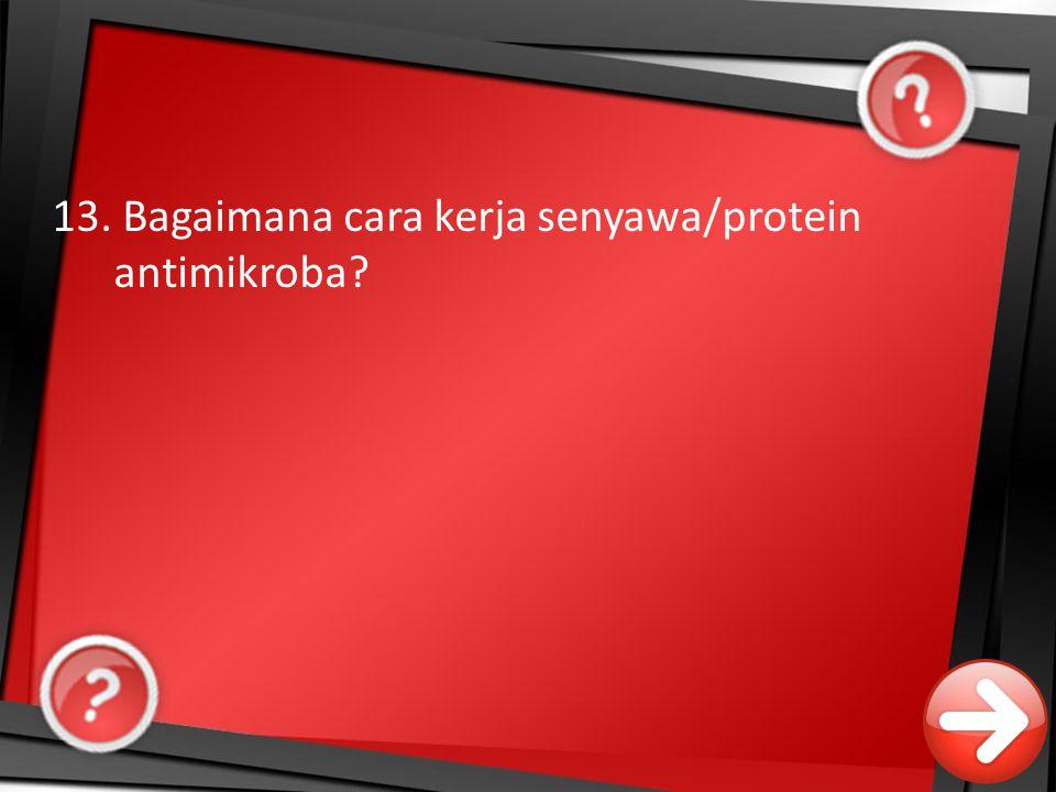 13. Bagaimana cara kerja senyawa/protein antimikroba?