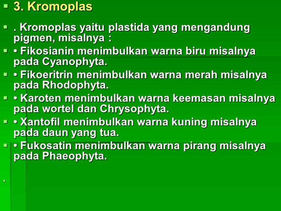 3. Kromoplas . Kromoplas yaitu plastida yang mengandung pigmen, misalnya :  Fikosianin menimbulkan warna biru misalnya pada Cyanophyta.  Fikoerit