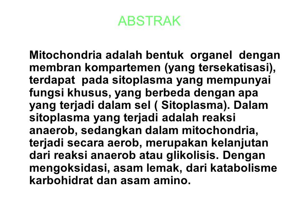 ABSTRAK Mitochondria adalah bentuk organel dengan membran kompartemen (yang tersekatisasi), terdapat pada sitoplasma yang mempunyai fungsi khusus, yang berbeda dengan apa yang terjadi dalam sel ( Sitoplasma).
