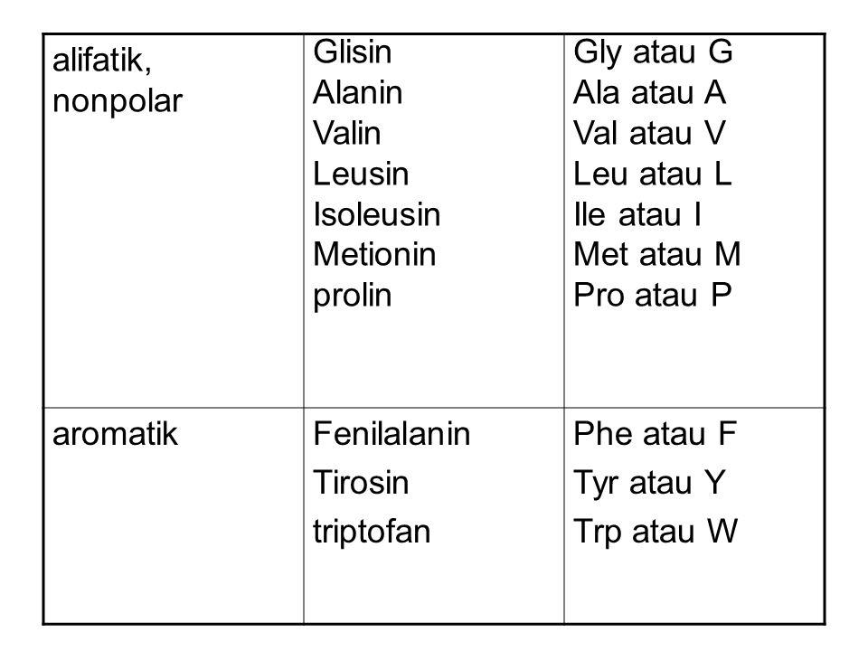 alifatik, nonpolar Glisin Alanin Valin Leusin Isoleusin Metionin prolin Gly atau G Ala atau A Val atau V Leu atau L Ile atau I Met atau M Pro atau P aromatikFenilalanin Tirosin triptofan Phe atau F Tyr atau Y Trp atau W
