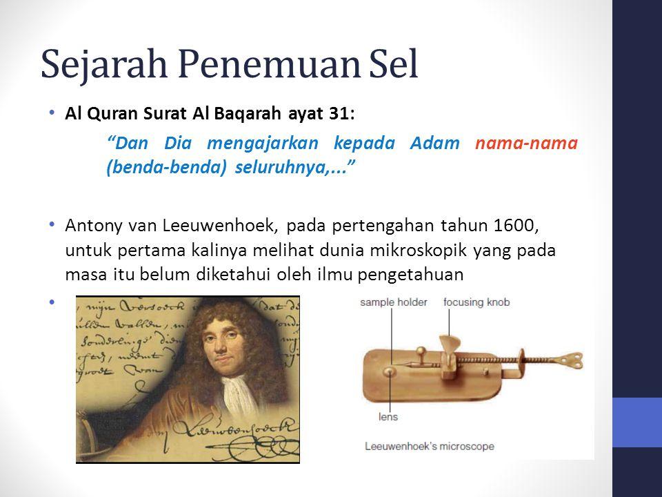 "Sejarah Penemuan Sel Al Quran Surat Al Baqarah ayat 31: ""Dan Dia mengajarkan kepada Adam nama-nama (benda-benda) seluruhnya,..."" Antony van Leeuwenhoe"